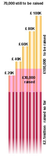 Swiss Church Fundraising Status Graphic